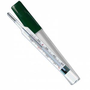 termometro ecologico come si
